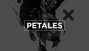 Pétales